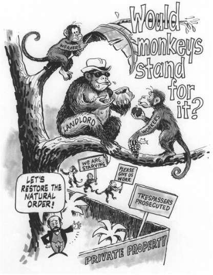 pictures of monkeys cartoon. The land monopolist monkey was